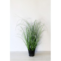 Trawa ośnieżona zielona 65 cm
