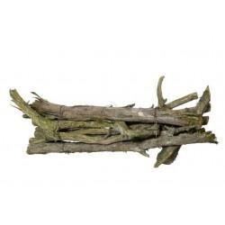 Patyki skiny wood susz...