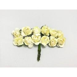 Róża papierowa cream