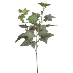 Bluszcz gałązka 68 cm zielona