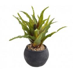 Aloes sztuczna roślina w...