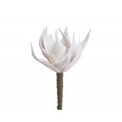 Sukulent X 1 biały 16 cm